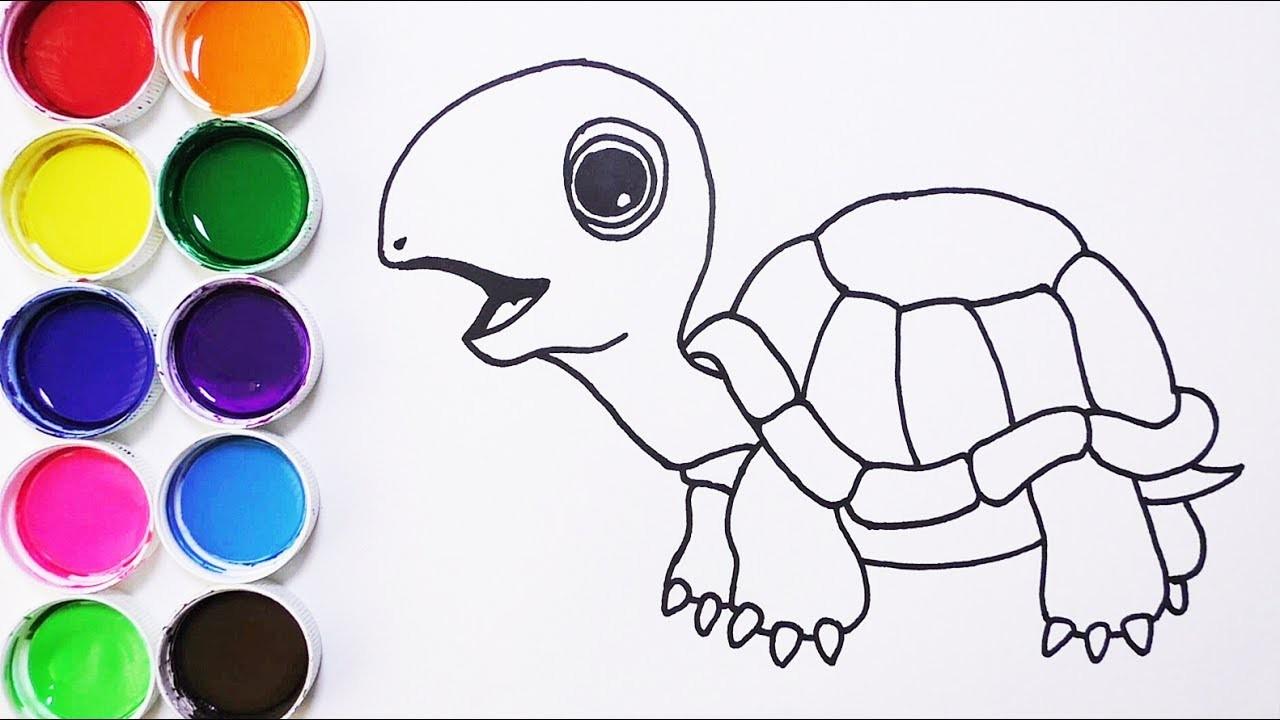 Cómo Dibujar Y Colorear Tortuga De Arco Iris Dibujos Para