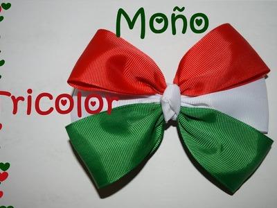 Moño Tricolor - México - Tutorial - DIY