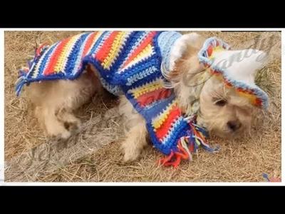 Gabán, capa o capote para perro con sweater parte 1. crochet dog poncho mexican mexicano
