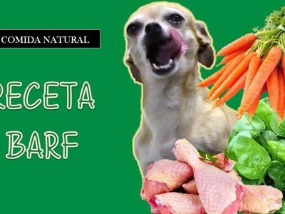El Chihuahueño - Comida para Chihuahua - Recetas para Perros - como hacer comida para perros