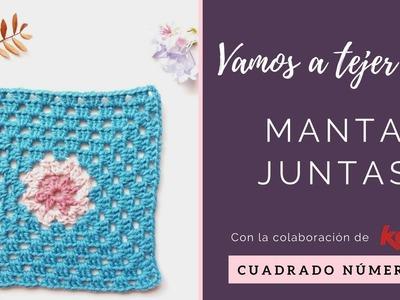 MANTA A CROCHET | CUADRADO 1