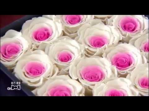 Rosas frescas por varios años - Flores preservadas - Rosas preservadas con diseños únicos
