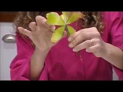 Aerografiado de una flor de azucar