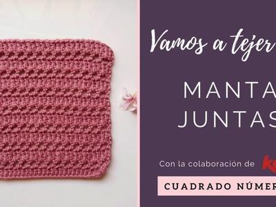 MANTA A CROCHET   CUADRADO 2