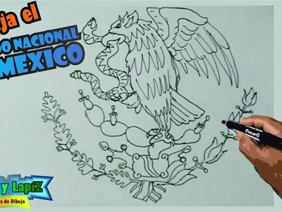 Aprende a dibujar fácil el escudo nacional de Mexico