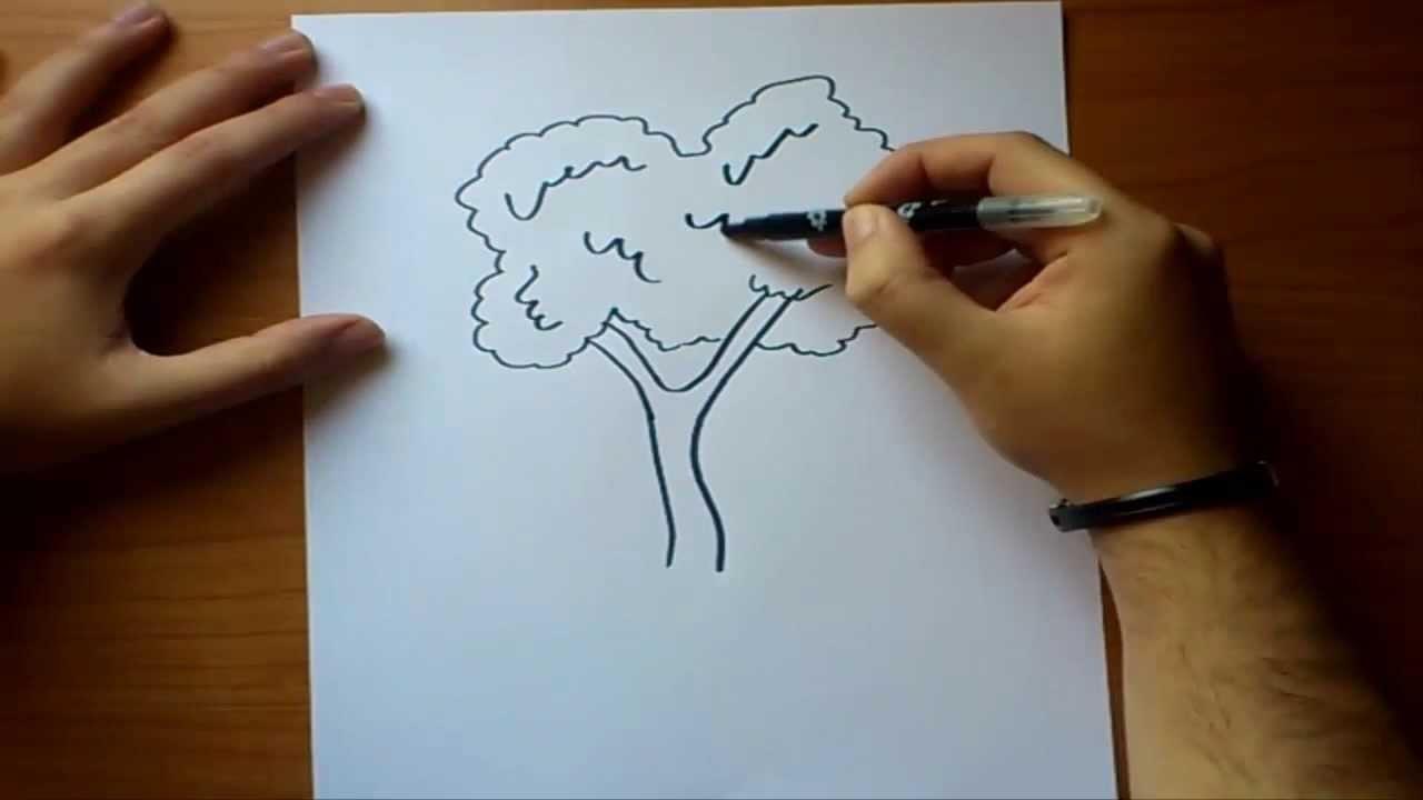 Como dibujar un arbol paso a paso   How to draw a tree