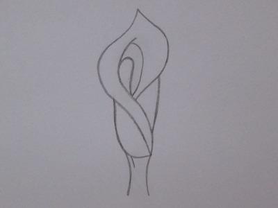Cómo dibujar una flor de lirio