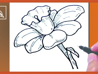 Cómo Dibujar Una Flor - How To Draw a Flower | Dibujando