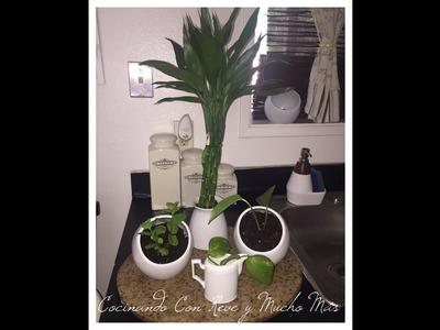 Hazlo tú mismo (DIY)  Dale un toque especial a tu cocina decorándola con plantas .