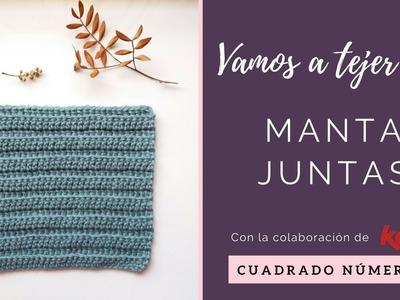 MANTA A CROCHET | CUADRADO 3