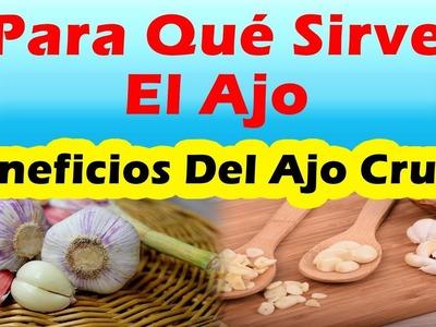 BENEFICIOS DEL AJO CRUDO Para Que Sirve El Ajo Sus Propiedades y Beneficios Que Ofrece Para La Salud