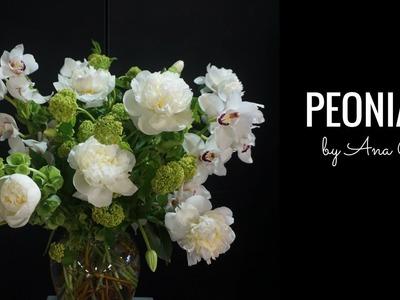 Como hacer un arreglo de flores con peonias