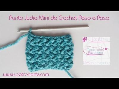 Punto Judía Mini de Crochet