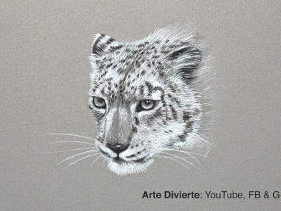 Cómo dibujar un leopardo de las nieves - Narrado