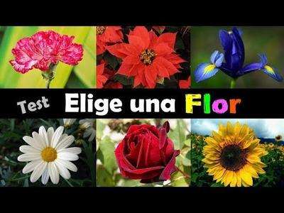 Test de Personalidad • ¿Qué flor te parece más bella?