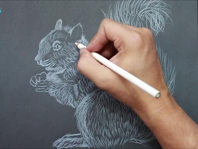 Como Dibujar una Ardilla - How to draw chipmunk - Easy Art