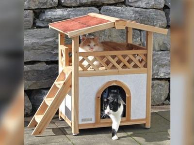 Casas para Gatos | Camas y Juegos | Ideas | Diseños Bonitos | Cat Houses