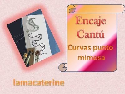 Encaje de bolillos de Cantú: Como hacer las curvas en el punto mimosa por lamacaterine