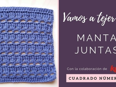 PUNTO DE RAMILLETE | CUADRADO 6