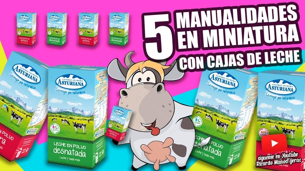 5 MANUALIDADES CON CAJAS DE LECHE|Manualidades Reciclaje|DIY