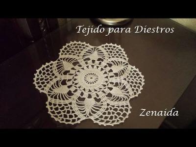 Carpeta para mantel Crochet para Diestros