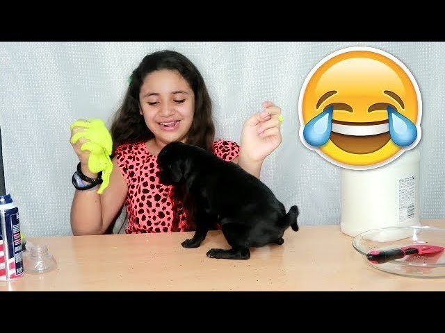 Slime al Reves Slime Backwards Challenge ???? Diy tutorial slime Momentos Divertidos