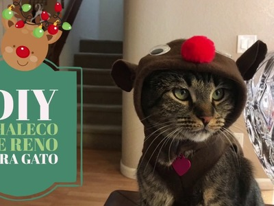 DIY Chaleco de Reno para Gato