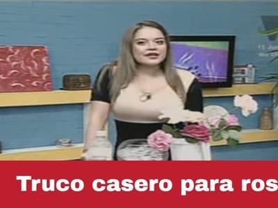 Truco Casero: haz que las rosas duren mucho más tiempo