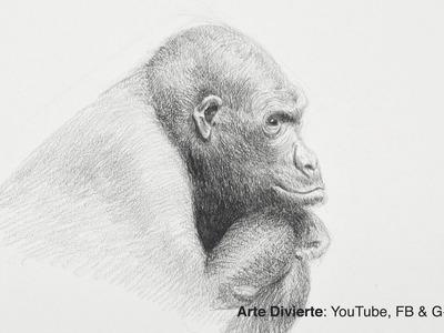 Cómo dibujar un gorila - Narrado