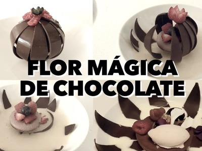 FLOR MÁGICA DE CHOCOLATE.  EXPECTATIVA.REALIDAD