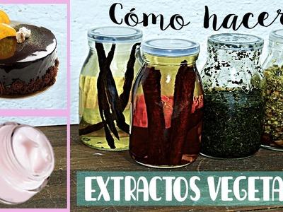 Cómo hacer extractos vegetales.  Alimentación y cosmética