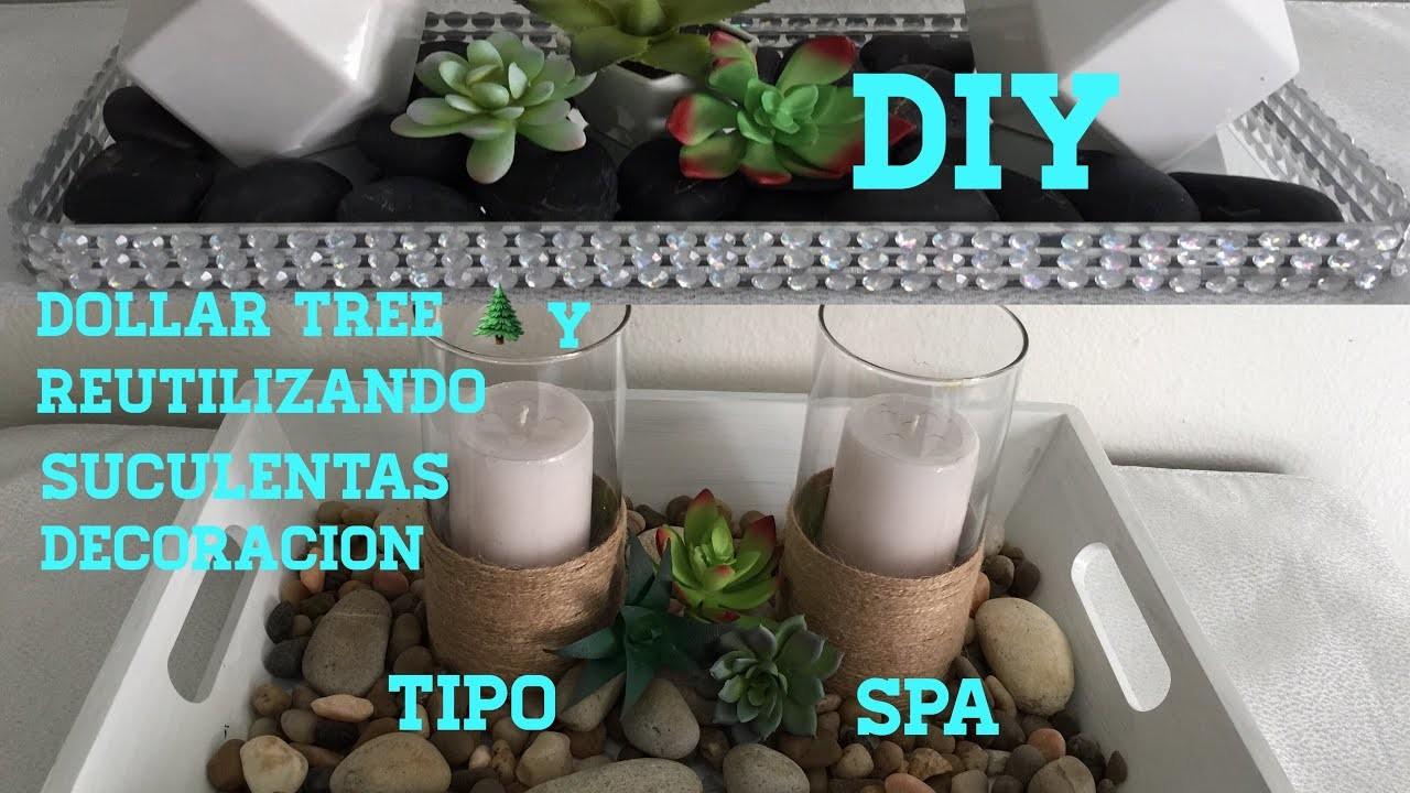 DIY Dollar tree y reutilizando con suculentas tipo spa