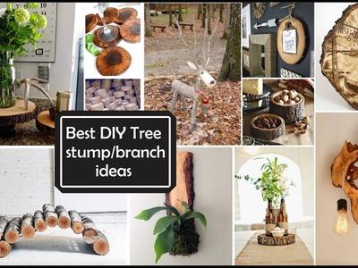 Ideas de Decoración con Ramas y troncos.Best DIY Tree stump.branch ideas