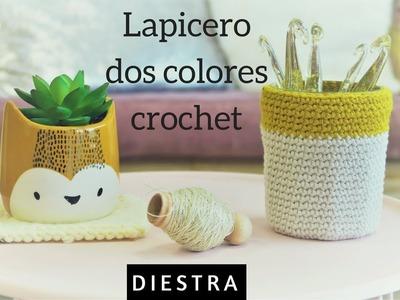 LAPICERO CROCHET DOS COLORES | DIESTRA | CHIC DIY