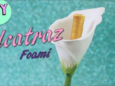 Alcatraz.Flores de foami.DIY