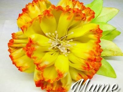 CLAVEL DE LISTON POPOTILLO-bunga pita myme mijangos