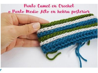Punto Camel en Crochet - Camel Crochet Stitch by Mamma DO IT YOURSELF   Punto Fantasía Nº4