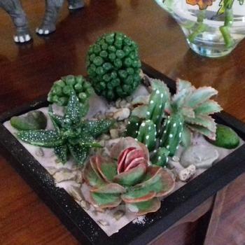 cactus de pasta ceramica