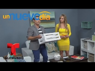 Martín Amado te enseña a organizar y decorar tu hogar fácilmente | Un Nuevo Día | Telemundo