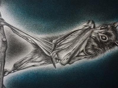 Aterrador Dibujo de un Murciélago a Lápiz - Especial Halloween