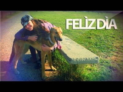 DIY - Como Hacer Collar para tu mascota, Especial Dia Del Animal @YaniBrilz