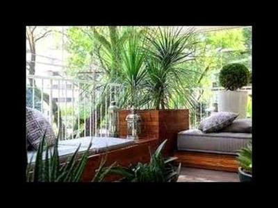 Plantas para decorar tu terraza