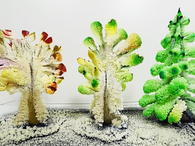 Arboles de Cristales Caseros (DIY Magic Crystal Garden)