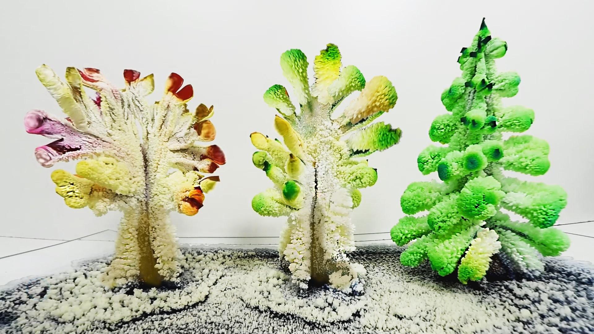Arboles de Cristales Caseros (DIY Magic Crystal Garden)