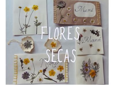 Tarjetas y sobres. Manualidad con flores  para Día de la Madre