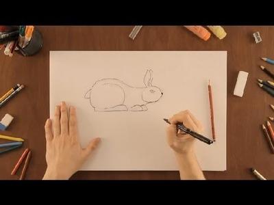 Cómo dibujar un conejo : Dibujos de la Naturaleza