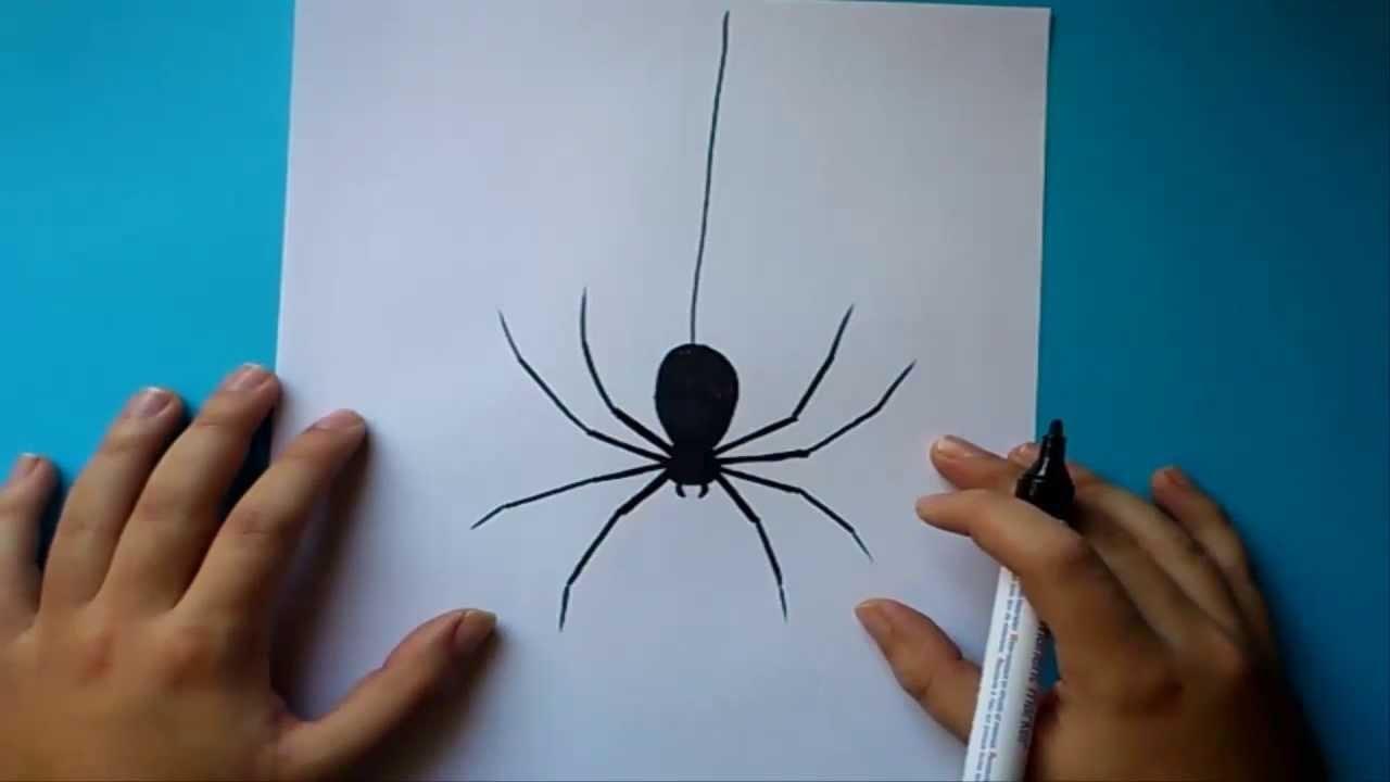 Como dibujar una araña paso a paso | How to draw a spider
