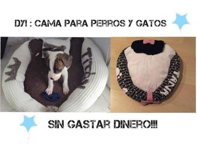DYI: Como hacer una cama para perros o gatos.
