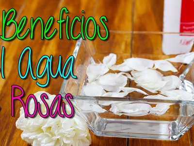 Agua de Rosas para que sirve - 7 Beneficios para la Piel - Cuidados de la Piel