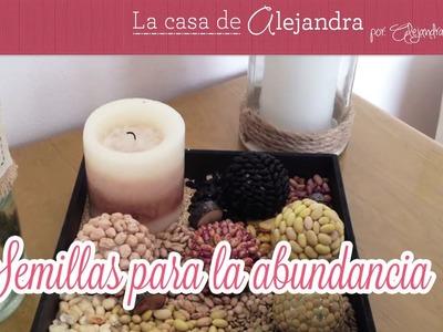 Semillas para la  abundancia  DIY Seed abundance